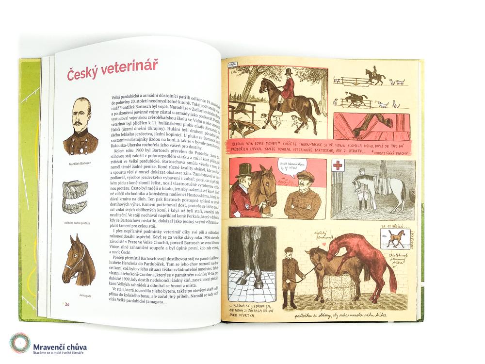 Velký příběh Velké pardubické_český veterinář